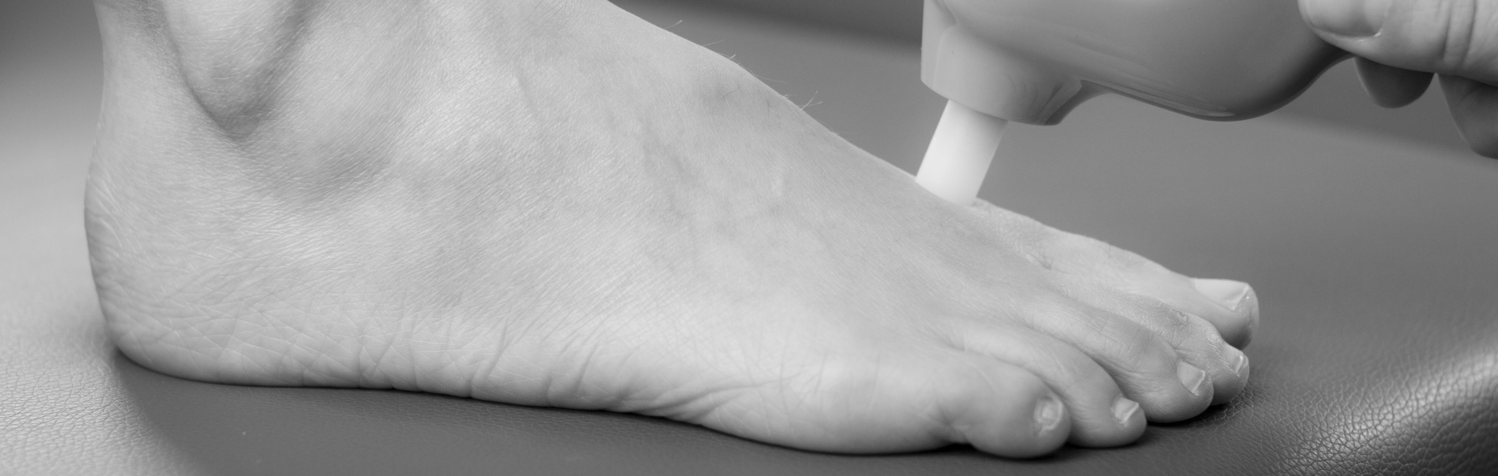 Årlig fodstatus